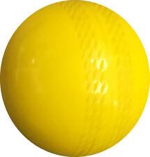 ND Windball Cricket Practice Indoor Training Coaching Ball