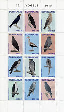 Suriname 2015 MNH Birds 12v Block Set Ducks Owls Birds of Prey Vogels Stamps