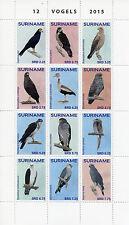 Suriname 2015 MNH Birds 12v Block Set Ducks Owls Birds of Prey Vogels Stamps