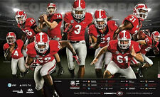 Georgia Bulldogs Football 2014 Team Schedule poster Todd Gurley Hutson Mason