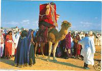Tunesien - Tataouine - Hochzeit Tracht - Festival des Ksour (H4954)