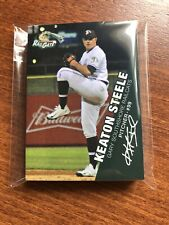 2018 GARY SOUTHSHORE RAILCATS COMPLETE TEAM SET MINORS INDY STEELE CAREY FOWLER