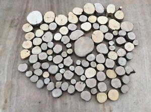 100 small log slices, decorative logs, display, hardwood