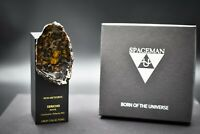 Meteorite Slice Pallasite SERICHO with Stand Kenya 62g Coated with UV Resin