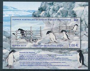 [338439] T.A.A.F 2012 penguins good very fine MNH sheet