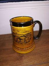 dartmoor ponies princetown ceramic beer tankard / jug 1 pint lord nelson ware
