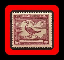 FAUNA, RAPHIPTERUS CHILENSIS DUCK, CLAUDIO GAY BOOK, MNH, AIR MAIL, 1948