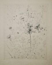 André DUNOYER DE SEGONZAC - Eau Forte- Arbre en fleurs