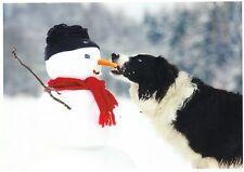 Ansichtskarte: ein Hund klaut dem Schneemann die Nase - the dog and the snowman