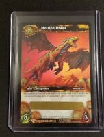 Wow Booster Pack Possible mount Loot Card! World of Warcraft Booster booster box