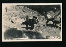 Colombia Pre - 1914 Collectable South American Postcards