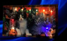 Katze Bild lein Wandbild Leuchtbild LED Leuchte digitalen Druck Bild