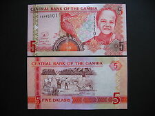GAMBIA  5 Dalasis 2013  (P25)  UNC