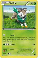 4 x Skiddo (XY 18/146) - Common