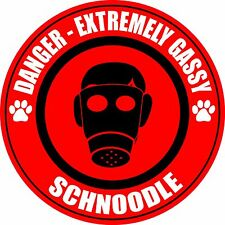 "Danger Extremely Gassy Schnoodle Dog Farting Fart 5"" Sticker"