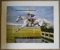 Desert Orchid - The Flying Grey by Roy Miller Fine Art Signed LE Edition Print