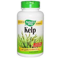 Kelp - 180 - 600mcg cápsulas - algas verdes súper alimento y suplemento de yodo
