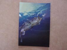Foil CHROMIUM Trading Card HAJIME SORAYAMA Not Sexy Robot C2 1993