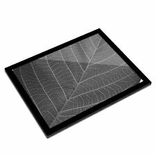 A3 Glass Frame BW - Leaf Macro Nature Cool  #38564