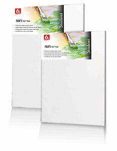 Set of 2x 25x25cm ( 10x10 inch) BLANK STRETCHED CANVAS GESSO PRIMED 100% COTTON