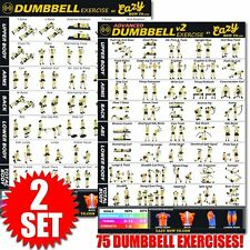 "Dumbbell Exercise Workout Banner Poster Complete Set BIG 28 x 20"" Chart Home Gym"