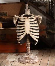 "Bethany Lowe Designs Halloween ""Skeleton Mannequin"" TD6037"