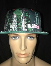 Nike LeBron 11 Akron Birch Christmas Limited Edition True Snapback Hat Cap