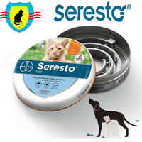 Bayer seresto flea and tick collar for cats health power protection new 2020