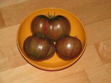 Chocolate Stripes gestreifte Tomate oliv-braun seltene Fleischtomate