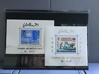 Afghanistan 1962-1963 United Nations Day mint never hinged stamp sheets R26909