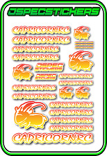 CAPRICORN RC STICKER A5 LAB 1/8 F1 1/10 TESLA ELECTRIC NITRO CAR HARD YEL RED W