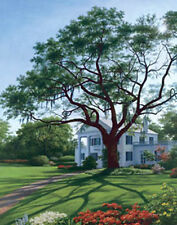 Afternoon Shadows by Bazzaro Landscape Old House Plantation Open Edition 22x28