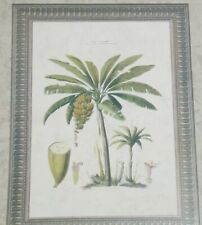 Waverly Classics 2 1/2 Rolls Pre-Pasted Wallpaper Border ~ Palm ~ 12.5 Yards NEW