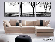 Black&white landscape modern wall art canvas print 3 panels Ready to Hang framed