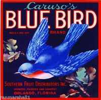 Orlando Florida Blue Bird Orange Citrus Fruit Crate Label Vintage Art Print
