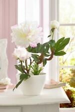 Unbranded Peony Potted Dried & Artificial Flowers