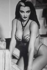 HALLOWEEN LILY MUNSTER ~ SPIDER BRA ~ YVONNE DE CARLO! ~ NICE PHOTO 8 X 10! F12