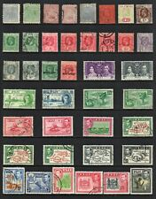 FIJI COLLECTION, 7 Pages of Mixed Mint/Used Stamps (233 TOTAL)