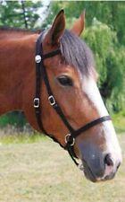 Nurtural Nylon Bitless Bridle for Regular Sized Horse, New Condition