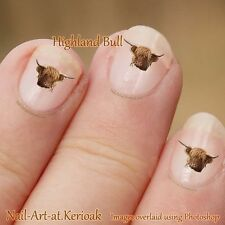 Bull Nail Art Stickers Decals Highland Bull, Highland Cattle, Nailart