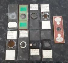 9 Antique Victorian Prepared Microscope Slides
