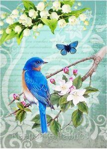 Bluebird & Floral Collage Crazy Quilt Block Multi Szs FrEE ShiP WoRld WiDE (B16