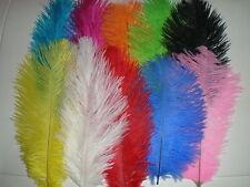 lot de 10 plumes autruche couleurs mélangés 20 cm