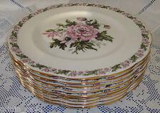 Vintage Royal Albert COTSWOLD Salad Plate (s)