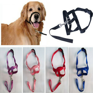 Pet Dog Head Collar Gentle Halter Leash Leader  for Training Dogs US