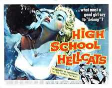 High School Hellcats Cartel 02 Letrero De Metal A4 12x8 Aluminio