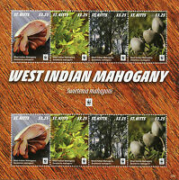 St Kitts 2016 MNH West Indian Mahogany WWF 8v M/S Trees Plants Stamps