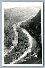 TIOGA CO. PA COLTON POINT STATE PARK VINTAGE REAL PHOTO POSTCARD RPPC