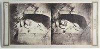Il Leone Da Lucerna Foto Stereo Vintage Albumina c1860