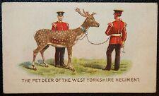 West Yorkshire Regiment  Fallow Deer Mascot      Original 1911 Vintage Card